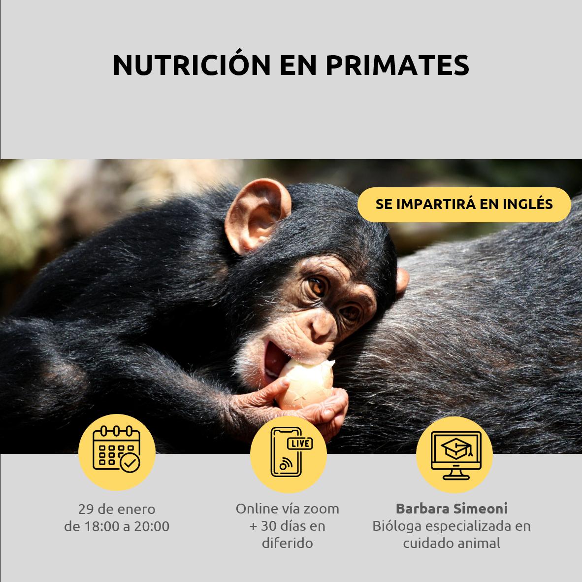 Lee más sobre el artículo Nutrición en primates